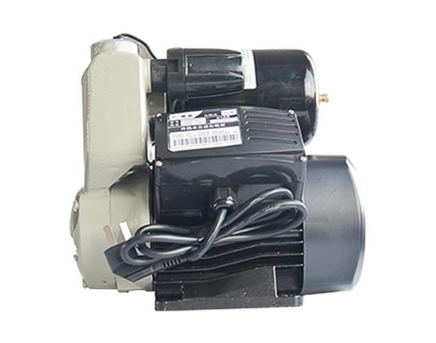Intelligent water pump-220